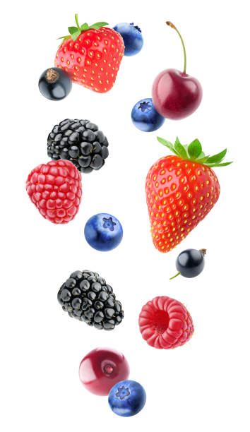isolated various berries - berry stock photos and pictures