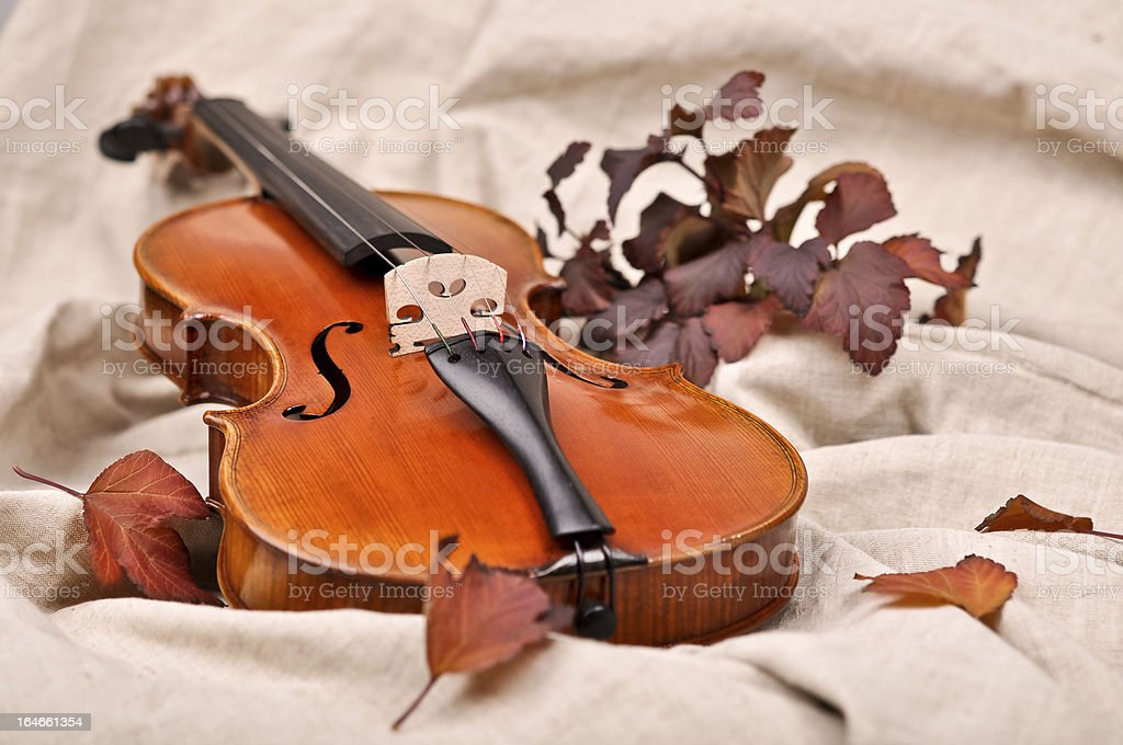 Isolated violin and autumn leaves on brown background royalty-free stock photo