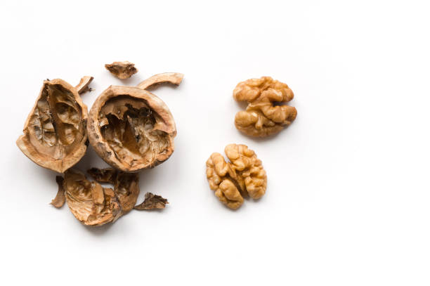 Isolated walnuts stock photo