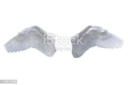 istock Isolated White Angel Wings 173012289