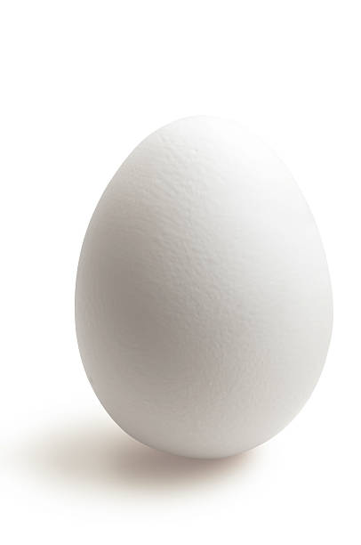 isolated white egg in white background - egg stock photos and pictures