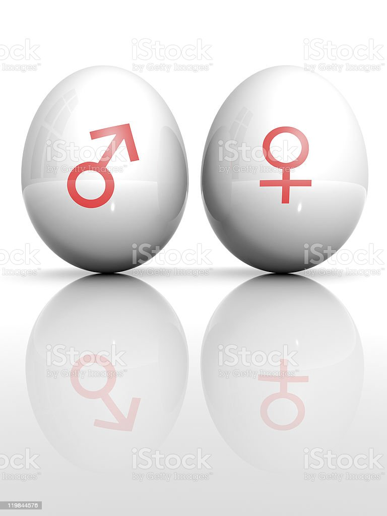 Isolated white egg with drawn Venus and Mars symbol royalty-free stock photo