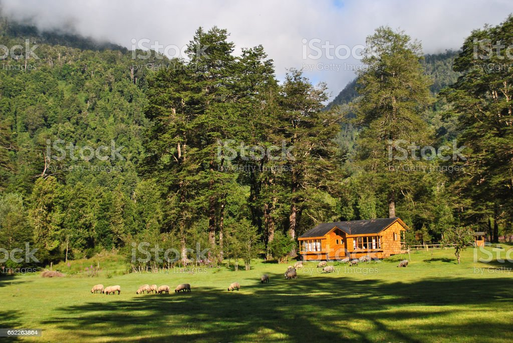 Isolated Wood Cabin stock photo