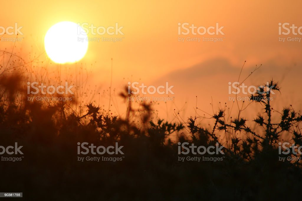 Israel Desolate stock photo