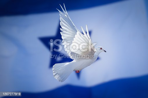 Israel flag with dove of peace