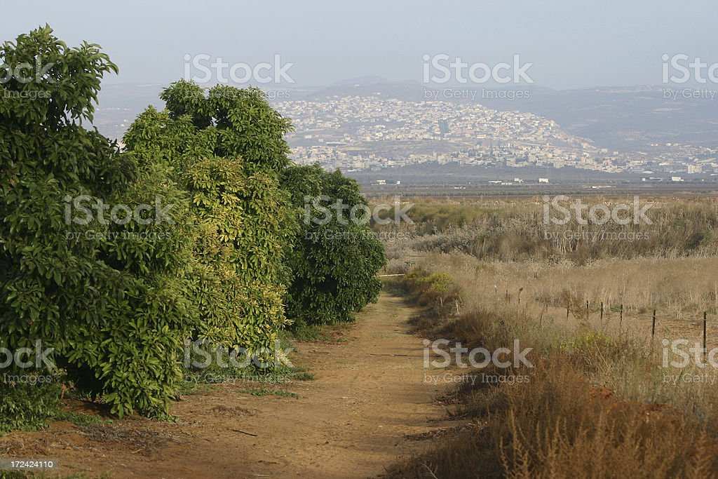 Israel Western Galillee path stock photo