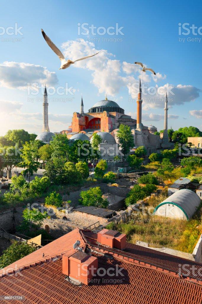 Istanbul am sonnigen Tag – Foto