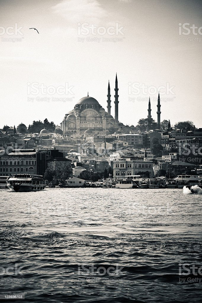Istanbul City Scene Monochrome royalty-free stock photo