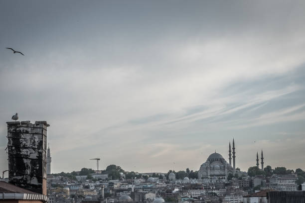 istanbul istanbul selimiye mosque night stock pictures, royalty-free photos & images