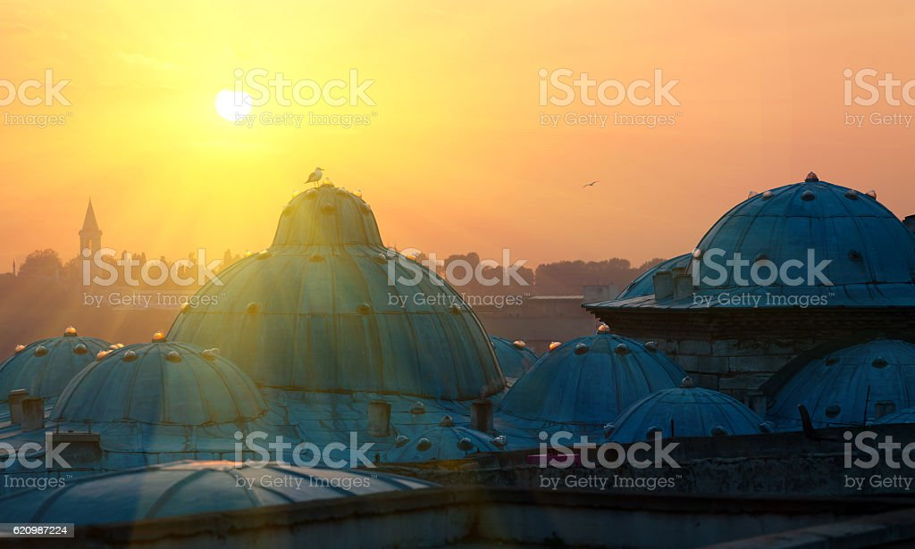 Istanbul the capital of Turkey, eastern tourist city. foto royalty-free