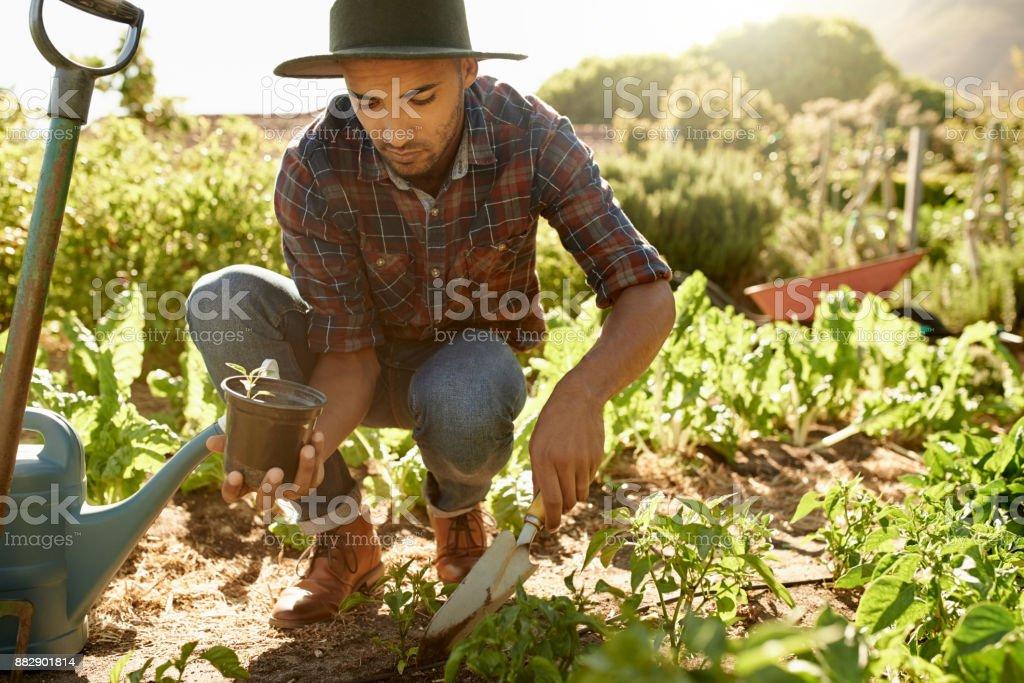 Se necesita trabajo duro para mantener una granja - foto de stock
