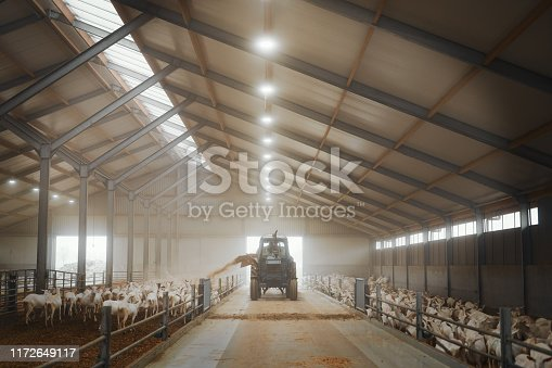 Shot of a tractor being operated on a goat farm