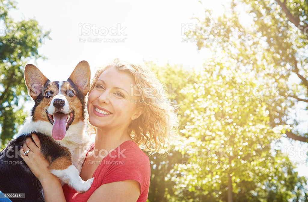 It was love at first bark stock photo