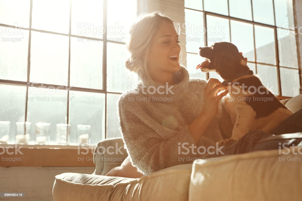 It was love at FUR-st sight stock photo