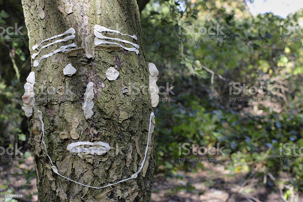 Used chewing gum tree graffiti in nature park woodland stock photo