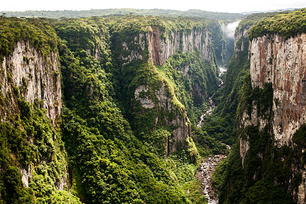 itaimbezinho canyon cliffs in southern brazil - schlucht stock-fotos und bilder