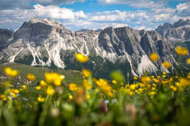 Italian Alps Summer time in Dolomites dolomites stock pictures, royalty-free photos & images