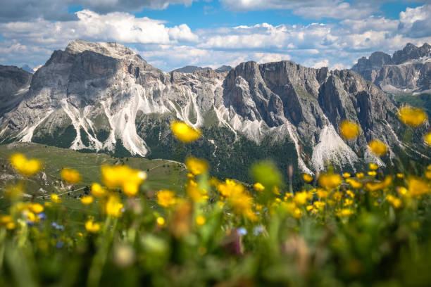 italian alps - dolomiti foto e immagini stock