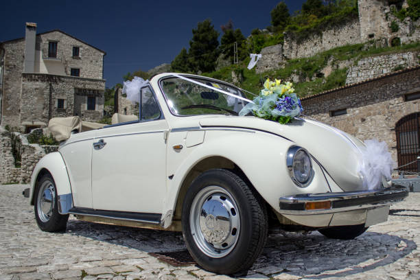 Italian Bug stock photo