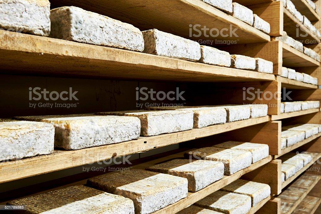 Italian cheese production stock photo