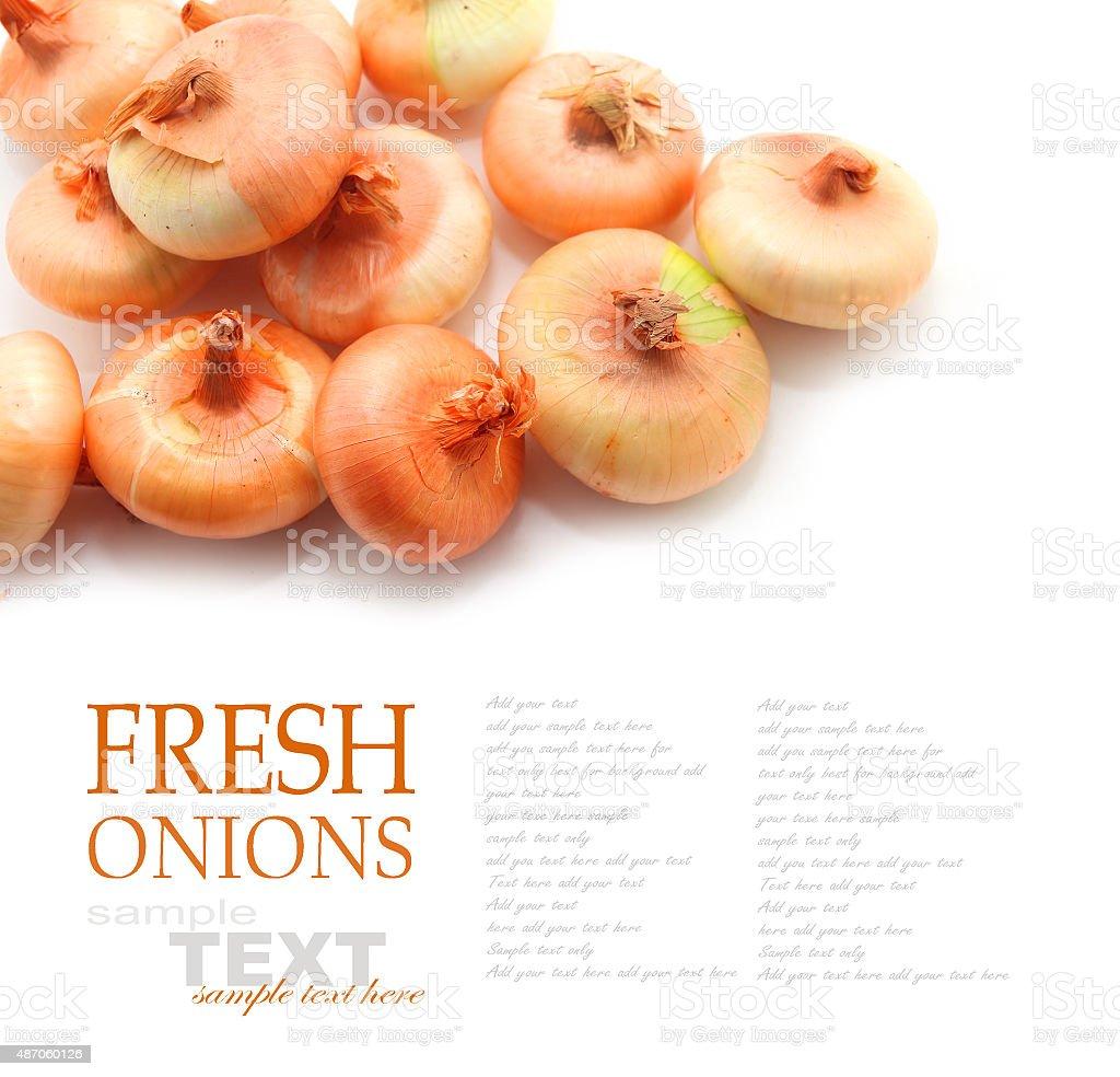 Italian cipollini onions stock photo