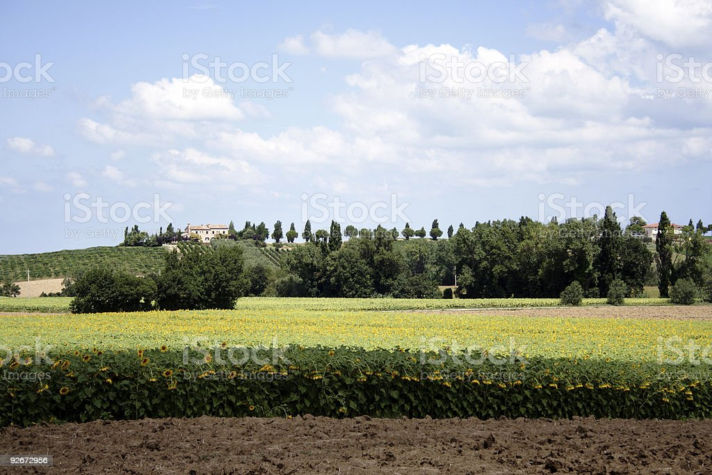 Italian countryside royalty-free stock photo