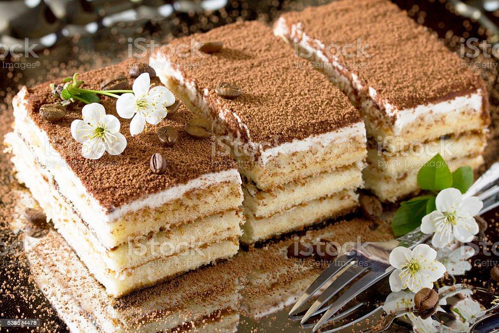 Italian dessert tiramisu. Traditional Italian cuisine, selective stock photo