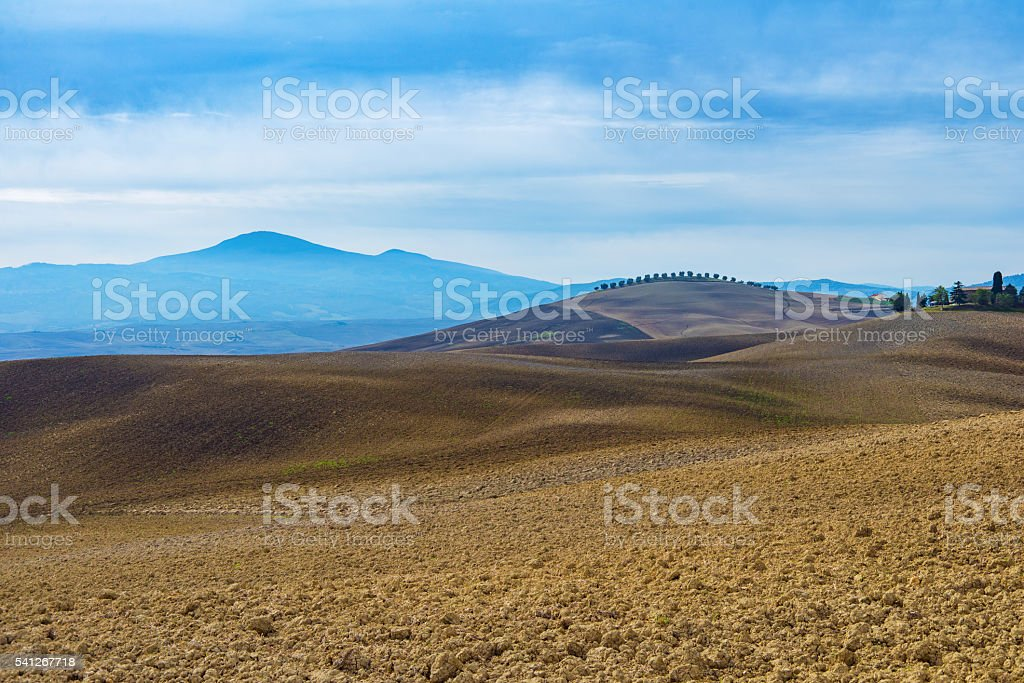 Italian fields at autumn. stock photo