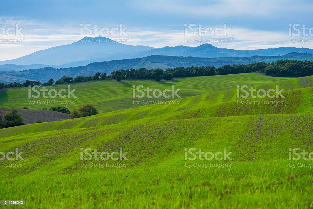 Italian fields at spring. stock photo