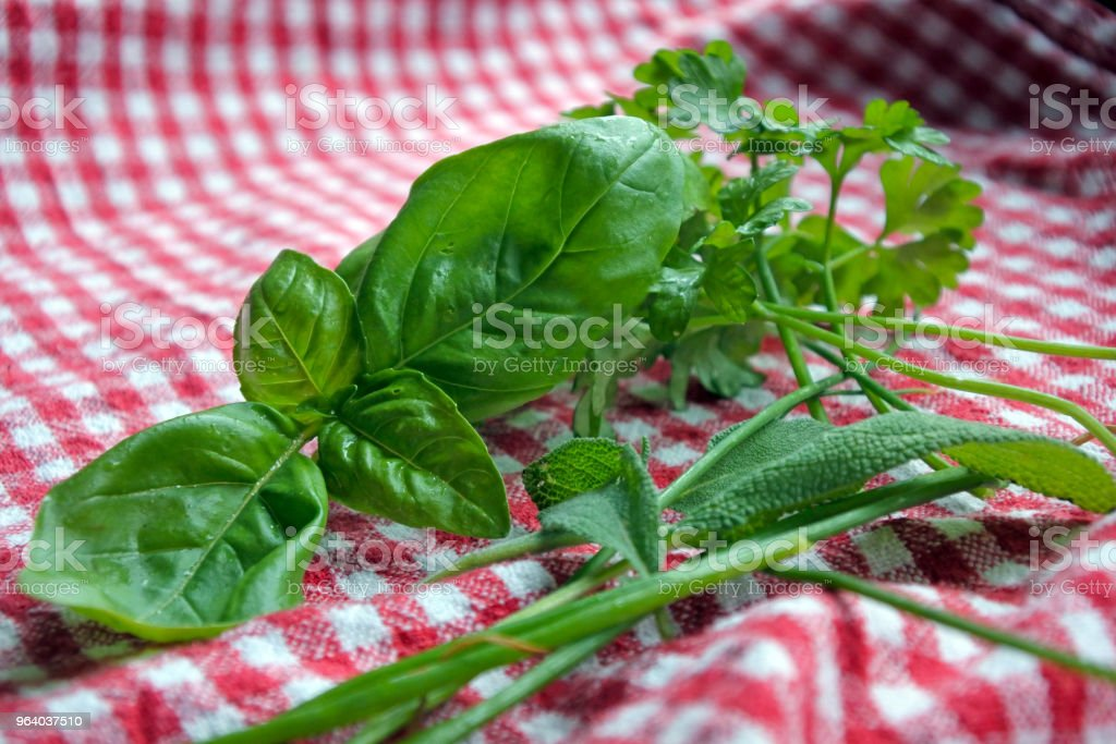 Italian herbs on a red and white napkin - Royalty-free Aromatherapy Stock Photo
