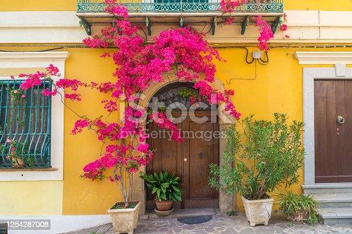 Italian house exterior with bougainvillea flowers on the wall around the doors in town Positano, Amalfi coast, Campania, Italy