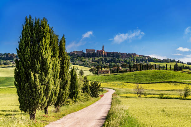 Italian landscape with the hilltop town of Pienza in Tuscany Landscape with the hilltop town of Pienza in Tuscany pienza stock pictures, royalty-free photos & images