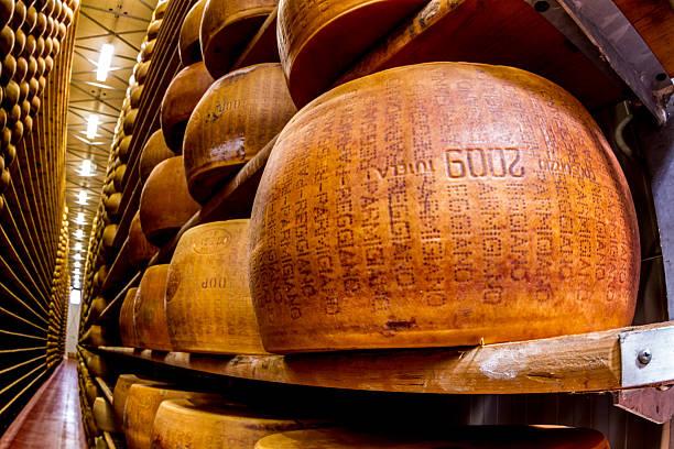 Italian Parmagiano Reggiano cheese aging stock photo