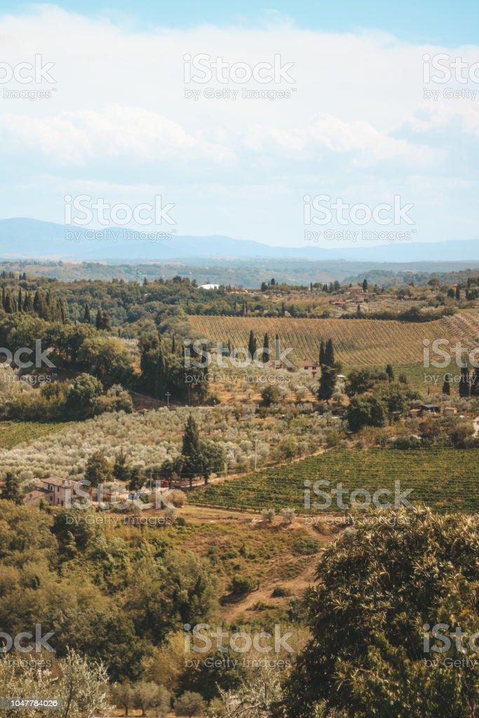 Italian summer - foto stock
