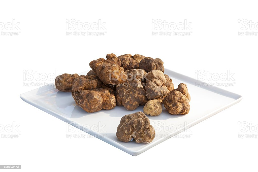 Italian white truffles stok fotoğrafı