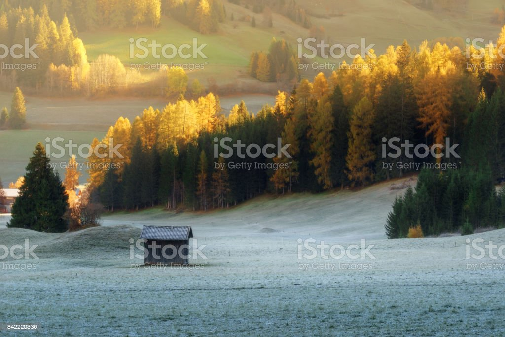 Italy. Dolomites. Colorful autumn freeze morning at meadows. Ground frost covered grass with grey hoarfrost stock photo