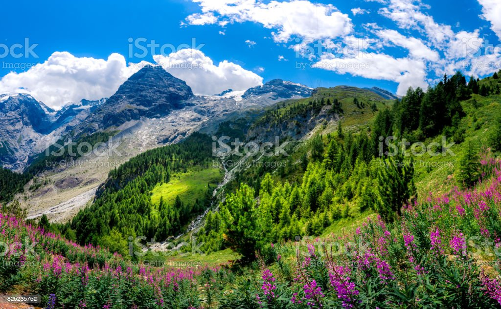 Italy, Stelvio National Park. Alpine landscape. stock photo