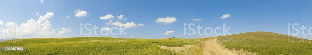 italy tuscany panorama with cultivated hills and road path royalty-free stock photo
