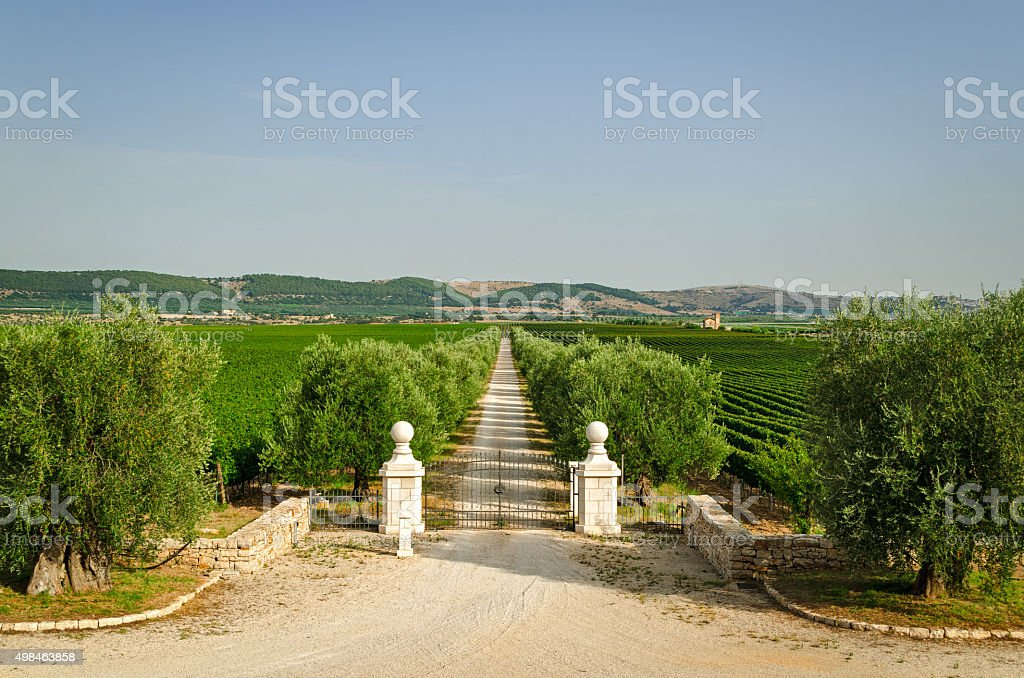 Italy, Villa entrance gate and estate (Puglia) stock photo