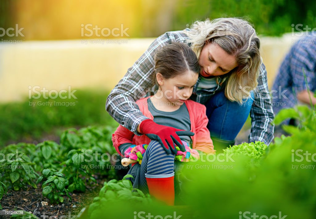It's a time to love and a time to grow stock photo