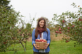 Shot of a young woman holding a container filled with freshly picked appleshttp://195.154.178.81/DATA/i_collage/pu/shoots/806057.jpg