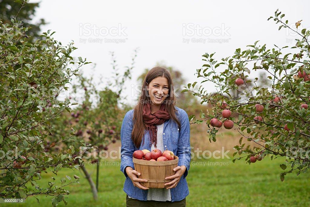 It's apple picking season! - Photo