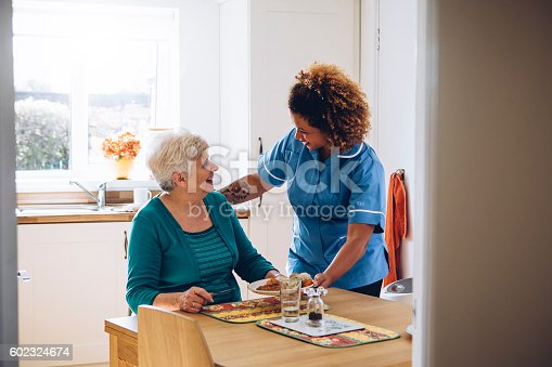 istock It's Dinner Time! 602324674