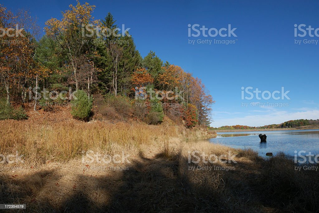Its Fall Time royalty-free stock photo