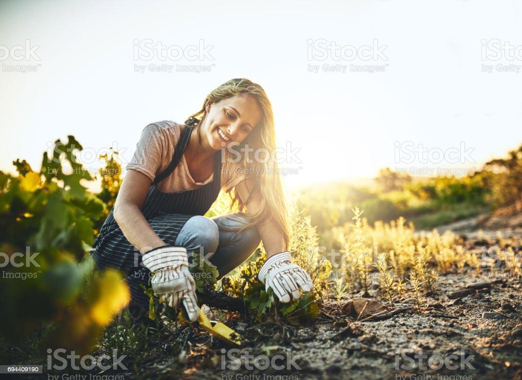 Il est difficile de ne pas être heureux quand vous êtes agriculture - Photo
