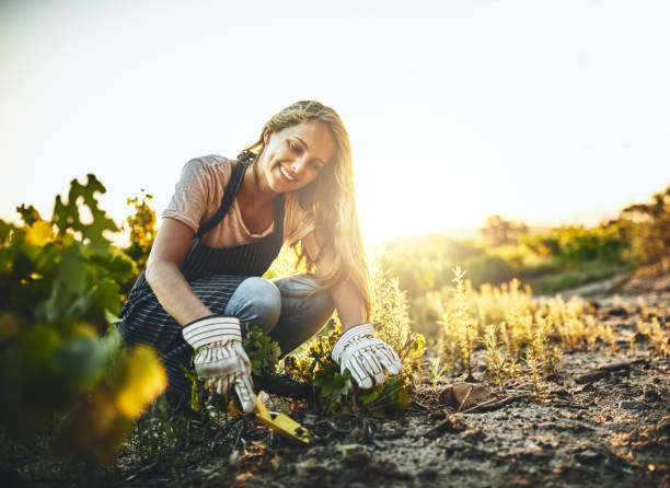 il est difficile de ne pas être heureux quand vous êtes agriculture - jardiner photos et images de collection
