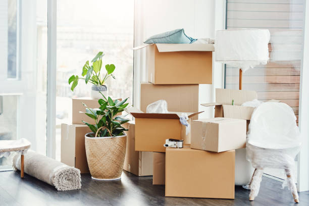 it's moving day - relocating stock pictures, royalty-free photos & images