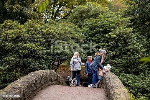 A multi-generation family with their pet dog standing on a bridge in Jesmond Dene Park, Newcastle-Upon-Tyne. They are looking at the view.