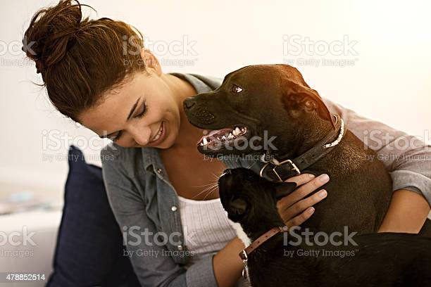 Its not a home without furkids picture id478852514?b=1&k=6&m=478852514&s=612x612&h=wdse4hktpgspiczbeqtkj77c8cliplmfpl5josxac5w=