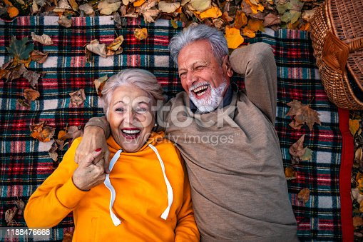 Funny picnic. Hilarious laughing senior couple lying on plaid blanket and having fun during picnic.